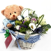 Flower Basket and Teddy