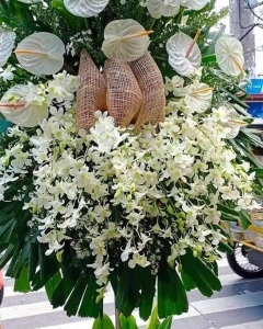 Funeral_orchids & an thorium Standing