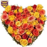 pomelo ,Orange and Yellow Roses Heart