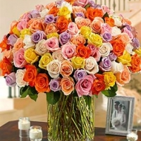 100 Multi Colored Roses